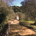 Laboratorio archeologico alla Villa romana del Varignano